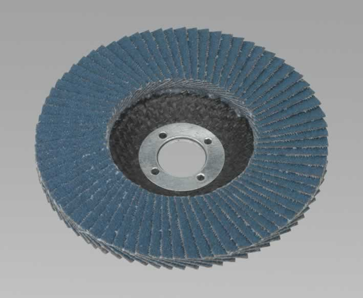 Flap Disc Zirconium Ø100mm 16mm Bore 80Grit