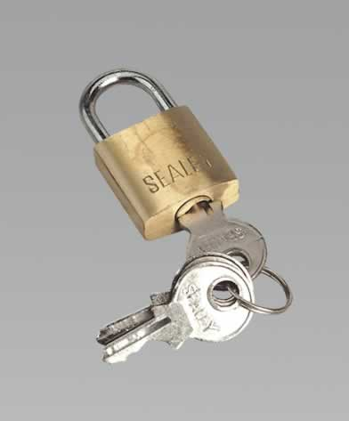 Padlock with Brass Cylinder 20mm
