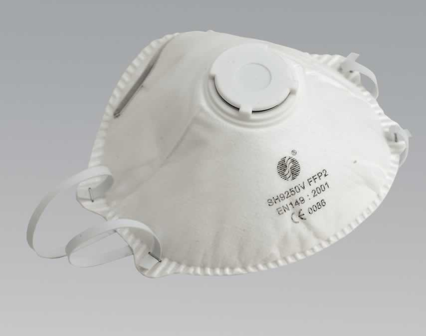 Disposable Dust Mask FFP2 - Pack of 10