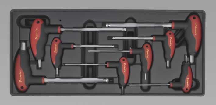 Tool Tray with T-Handle Ball-End Hex Key Set 8pc