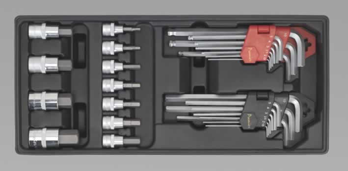 Tool Tray with Hex/Ball-End Hex Keys & Socket Bit Set 29pc (AH)