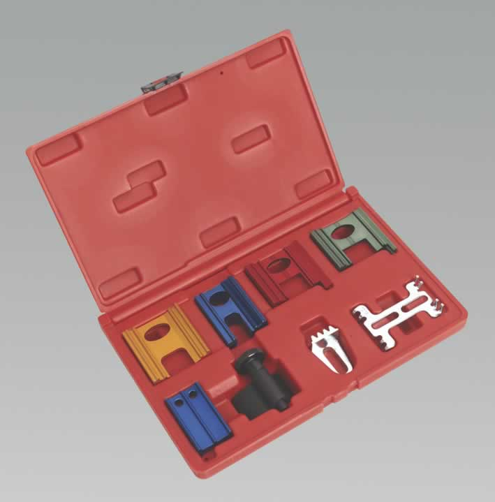 Diesel & Petrol Setting/Locking Kit 8pc   (AH)